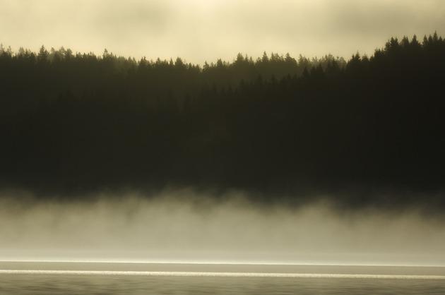 Vackra bilder från Mölndalsån