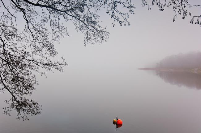 Skapa poesi av Mölndalsån