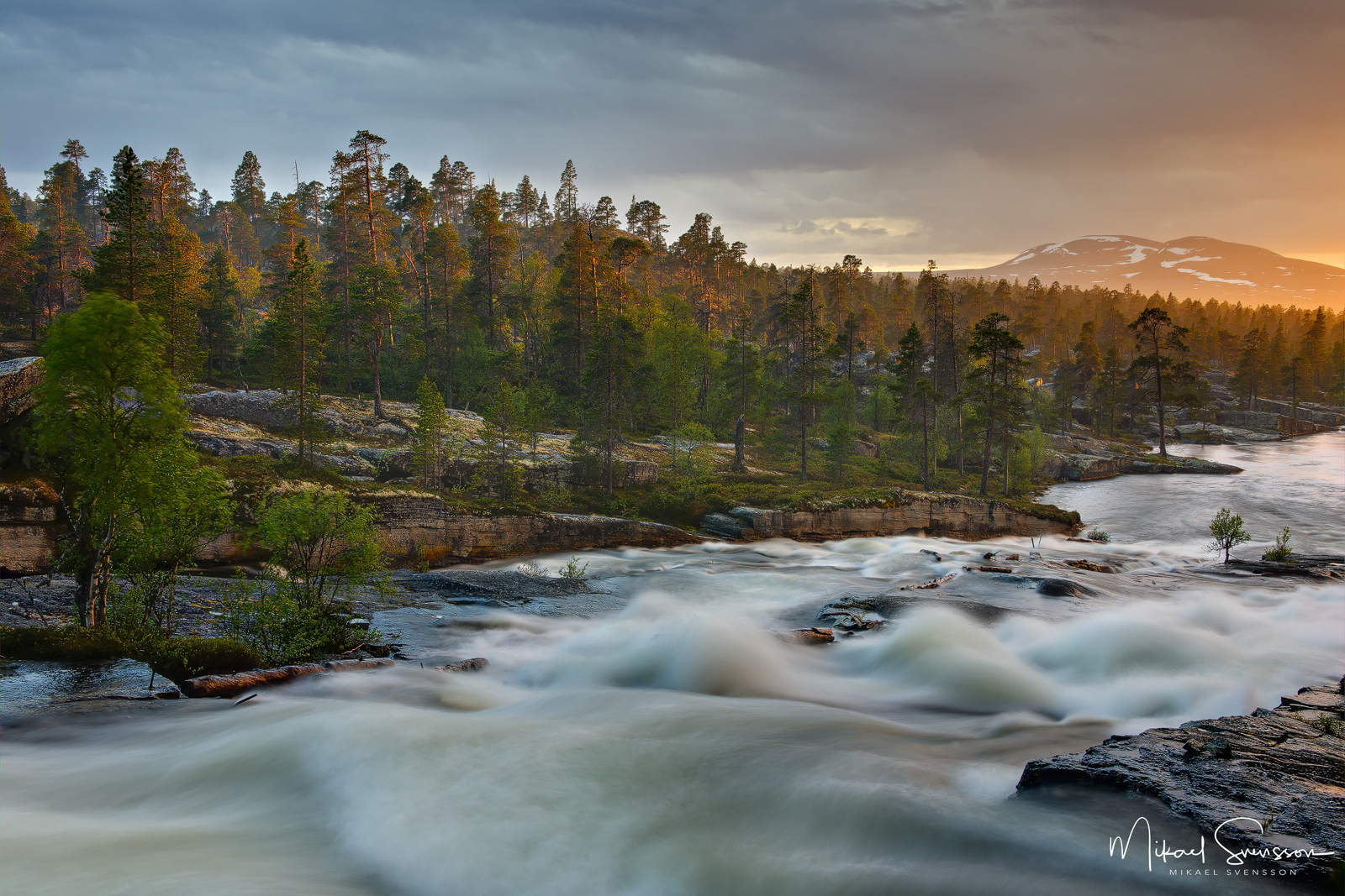 Røa, Femundmarka Nationalpark, Norge