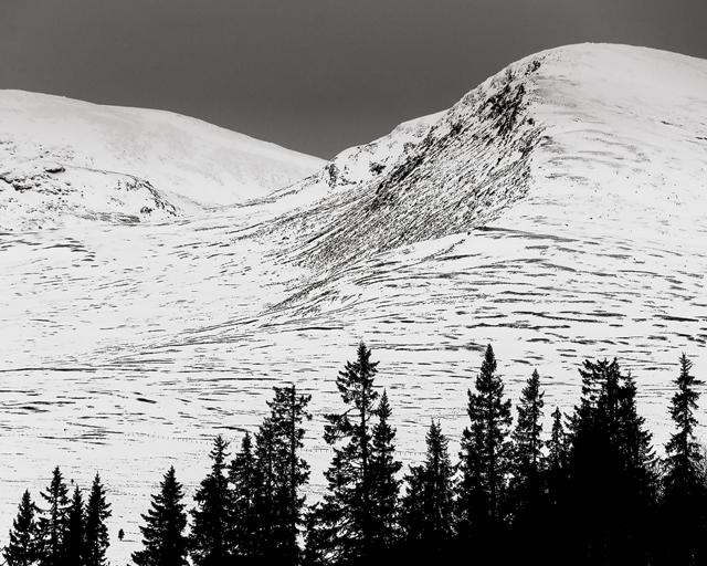Salsfjellet, Hedmark fylke, Norge
