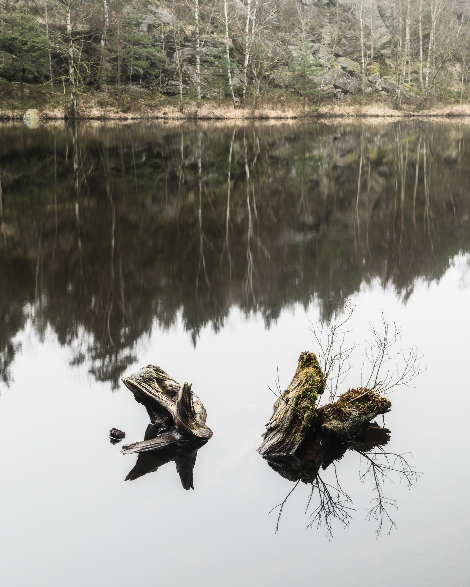 Östra Långvattnet, Delsjöområdet