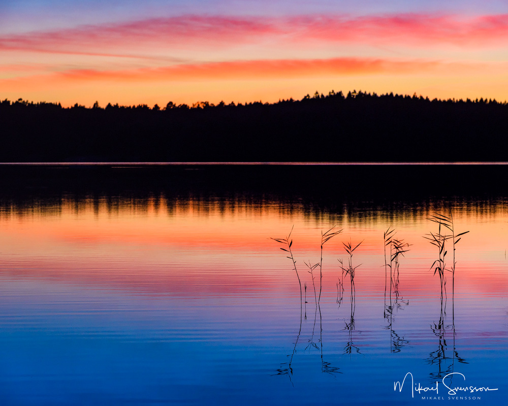 Lilla Delsjön, Delsjöområdet