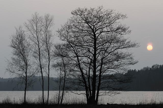 Lilla Delsjön, Göteborg