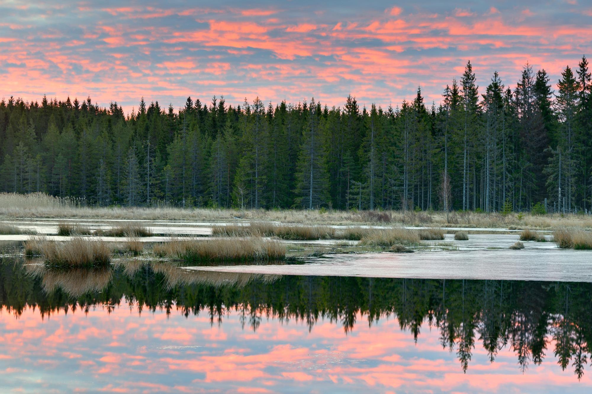 Fågelsjön, Hunneberg, Sweden
