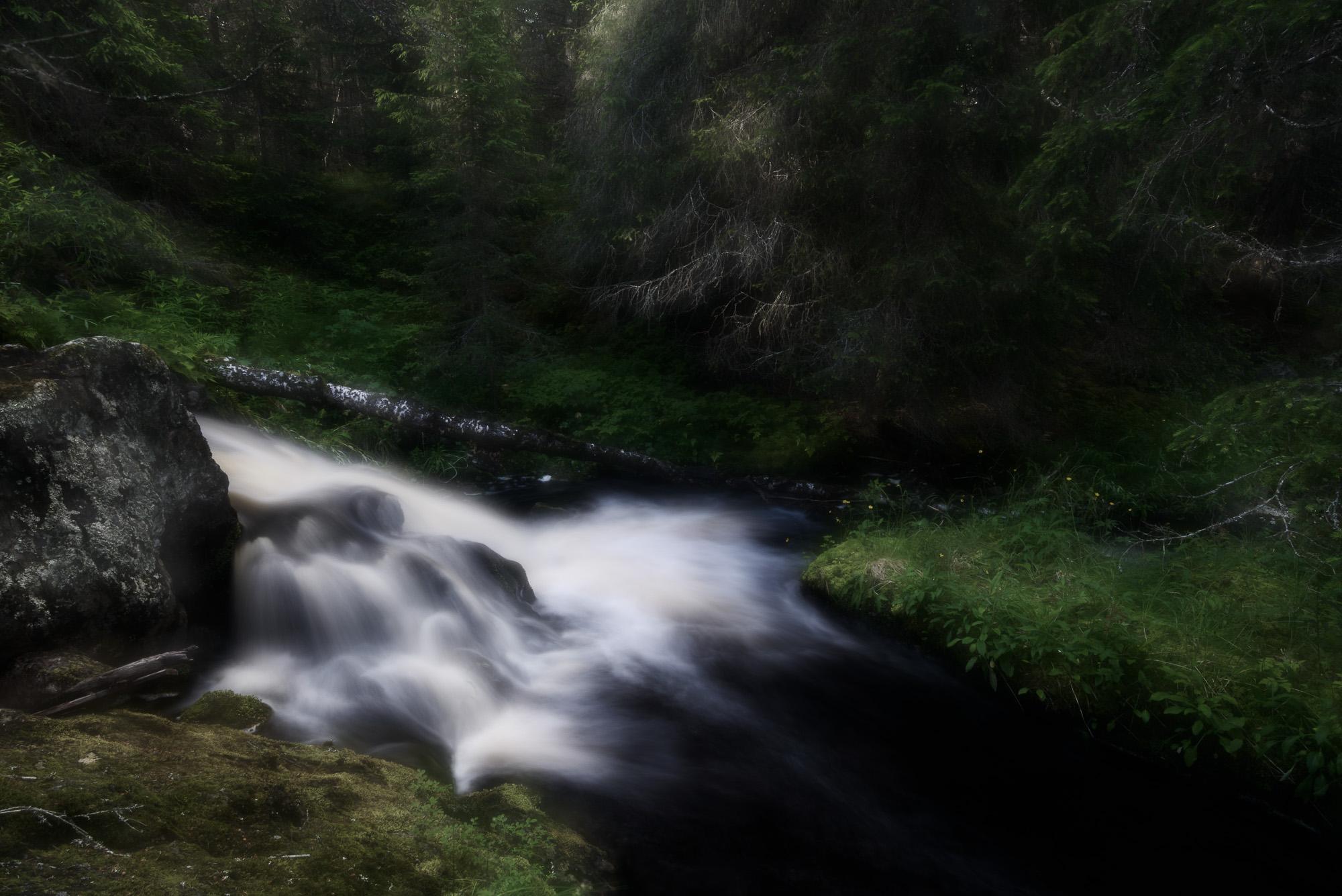 Lofsdalen, Härjedalen