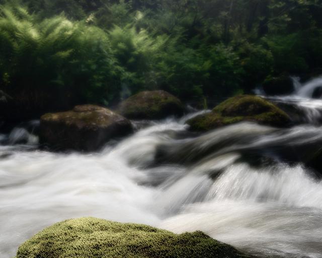 Njupån, Fulufjället Nationalpark, Dalarna