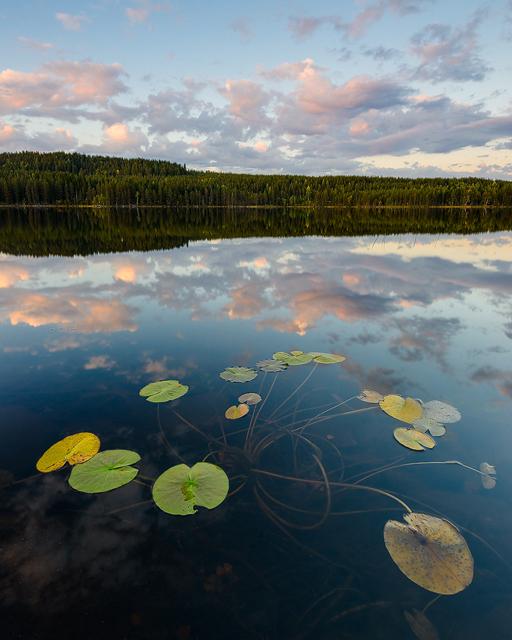 Tallsjön, Orsa Finnmark