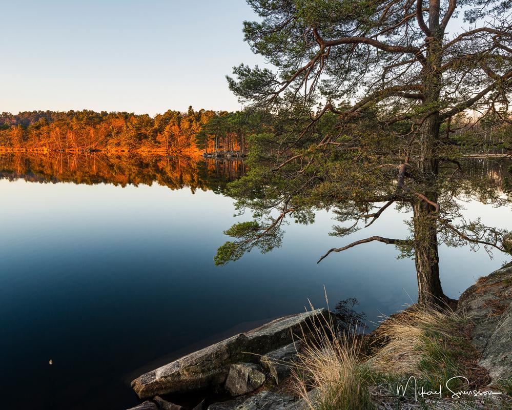 Stora Delsjön, Delsjöområdet, Göteborg.
