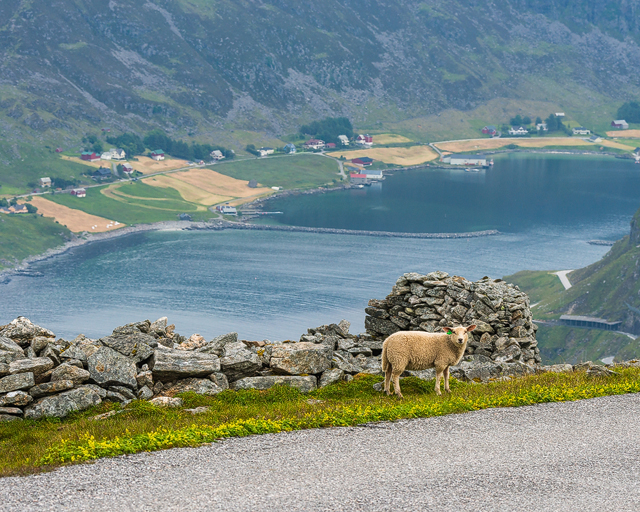 Vestkapp, Sogn og Fjordane, Norge