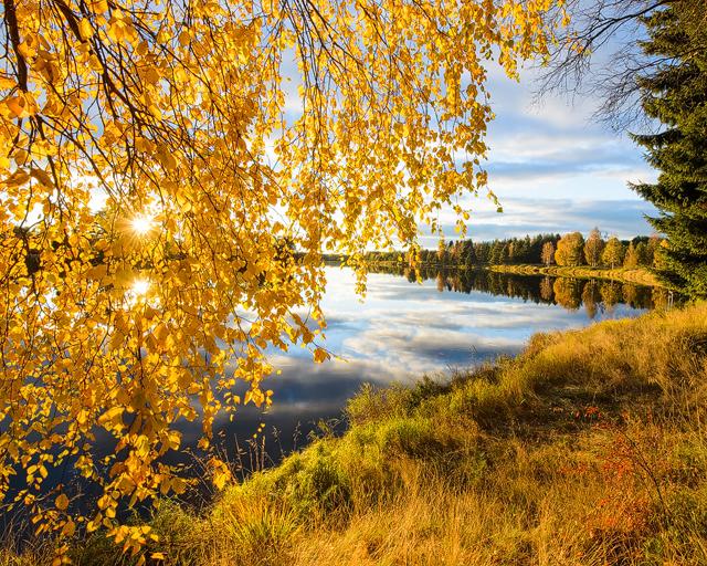 Sveriges vackraste midja