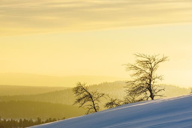 Valdalsfjellet, Hedmark fylke, Norge