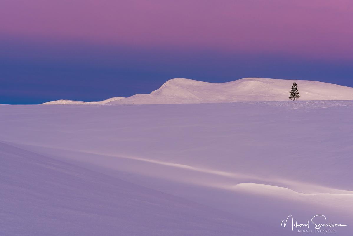 Salsfjellet, Norge