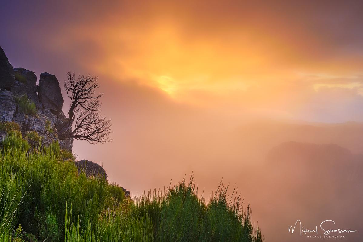 Pico do Arieiro, Madeira. Foto: Mikael Svensson