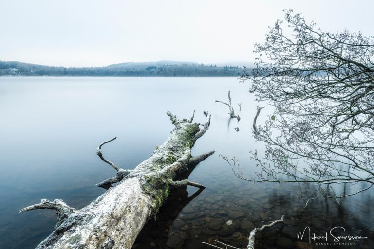 Rådasjön, Härryda kommun. Foto: Mikael Svensson