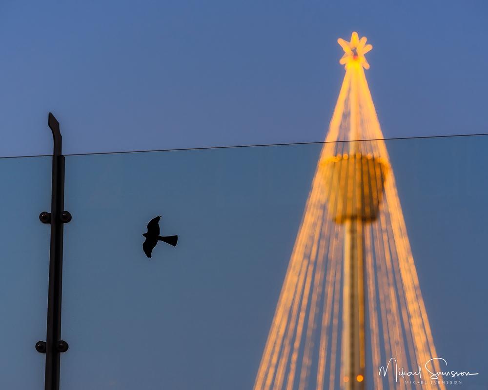 Julstaden Göteborg. Foto: Mikael Svensson