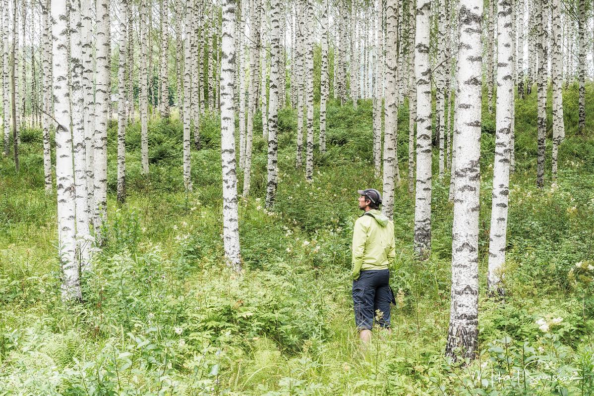 Åmotsfors, Värmland. Foto: Mikael Svensson, www.mikaelsvensson.com