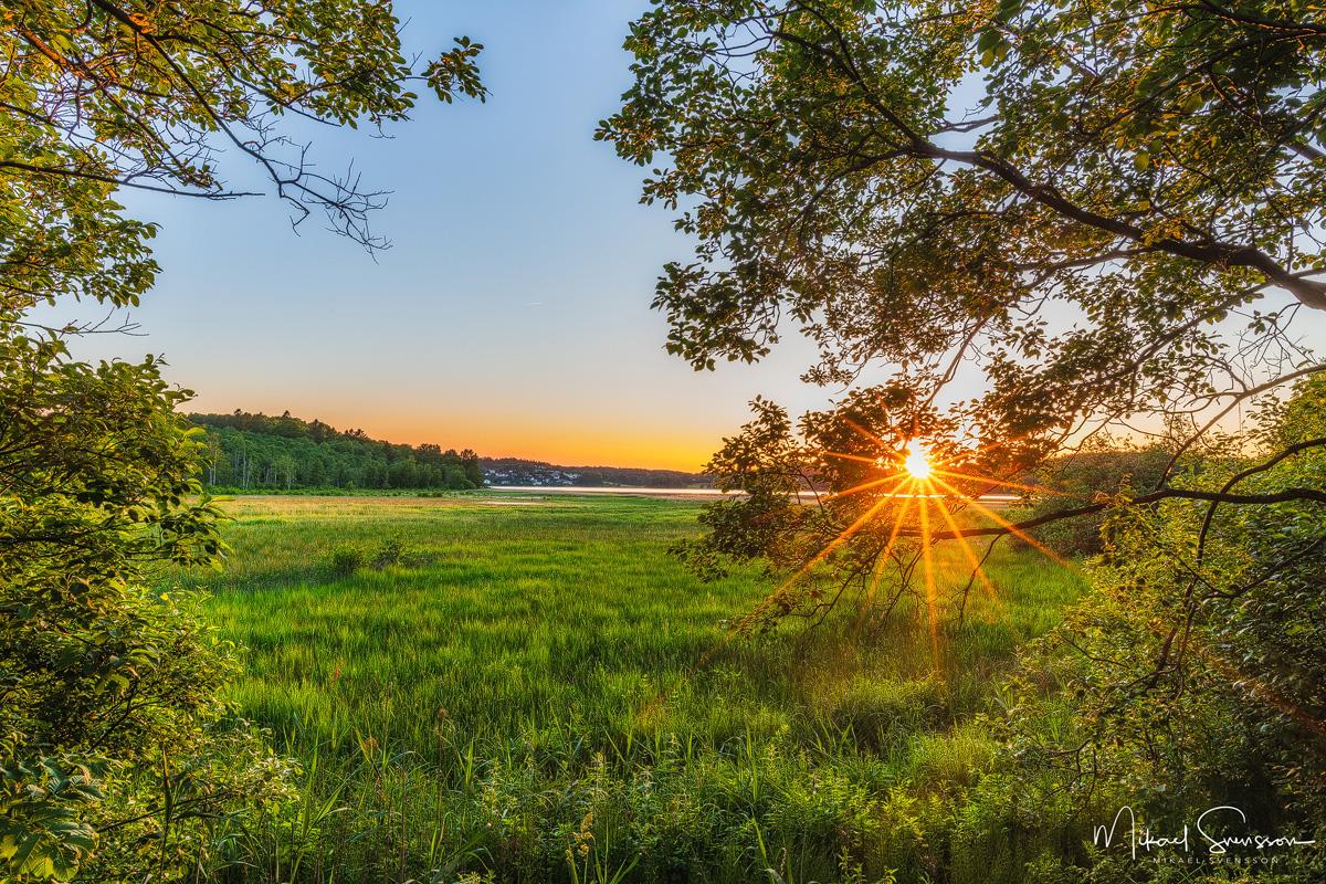Rådasjöns Naturreservat, Härryda kommun.