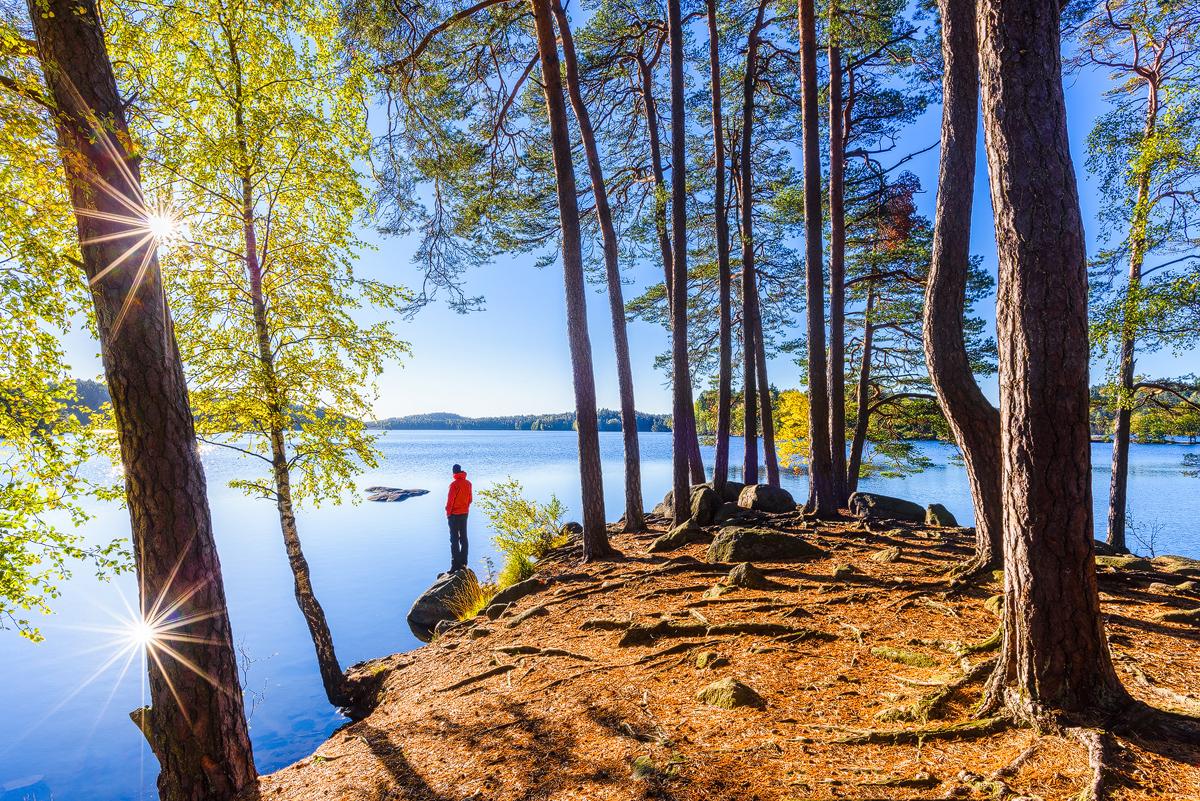Delsjön - där stad och vildmark möts