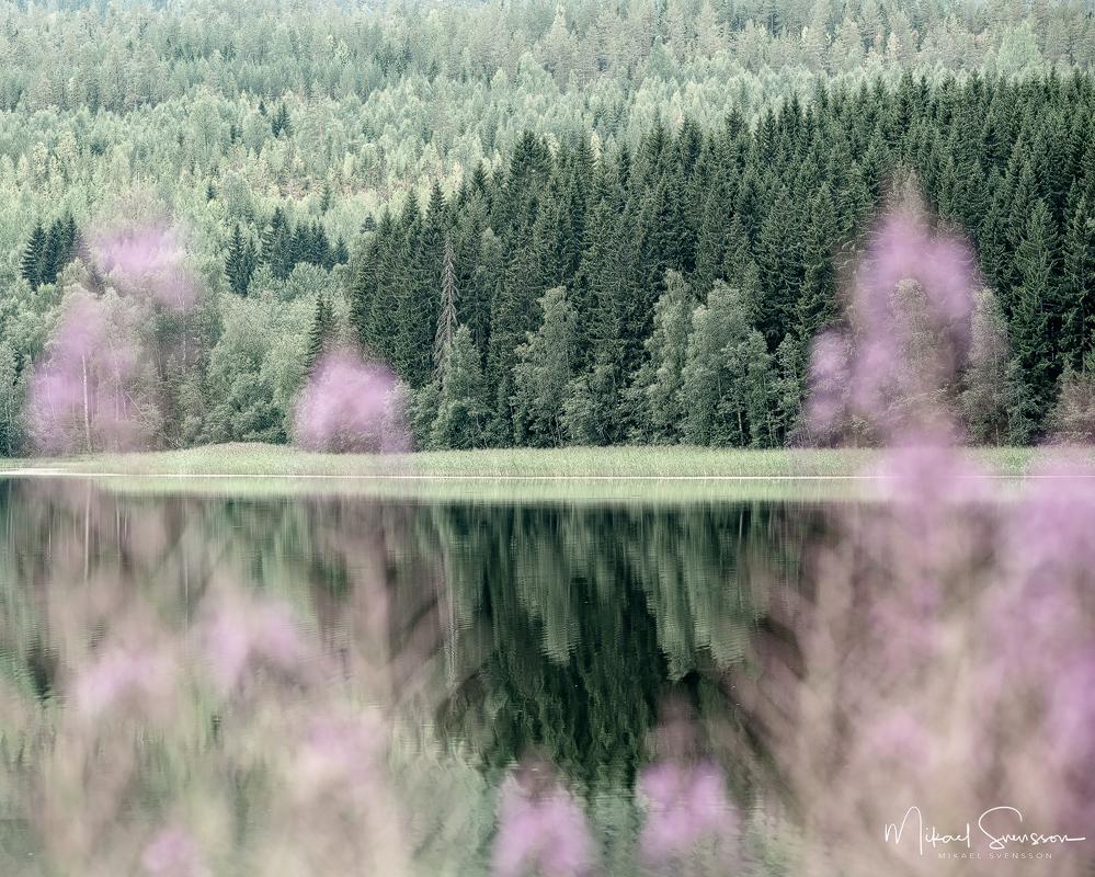 Utbysjön, Örnsköldsvik kommun