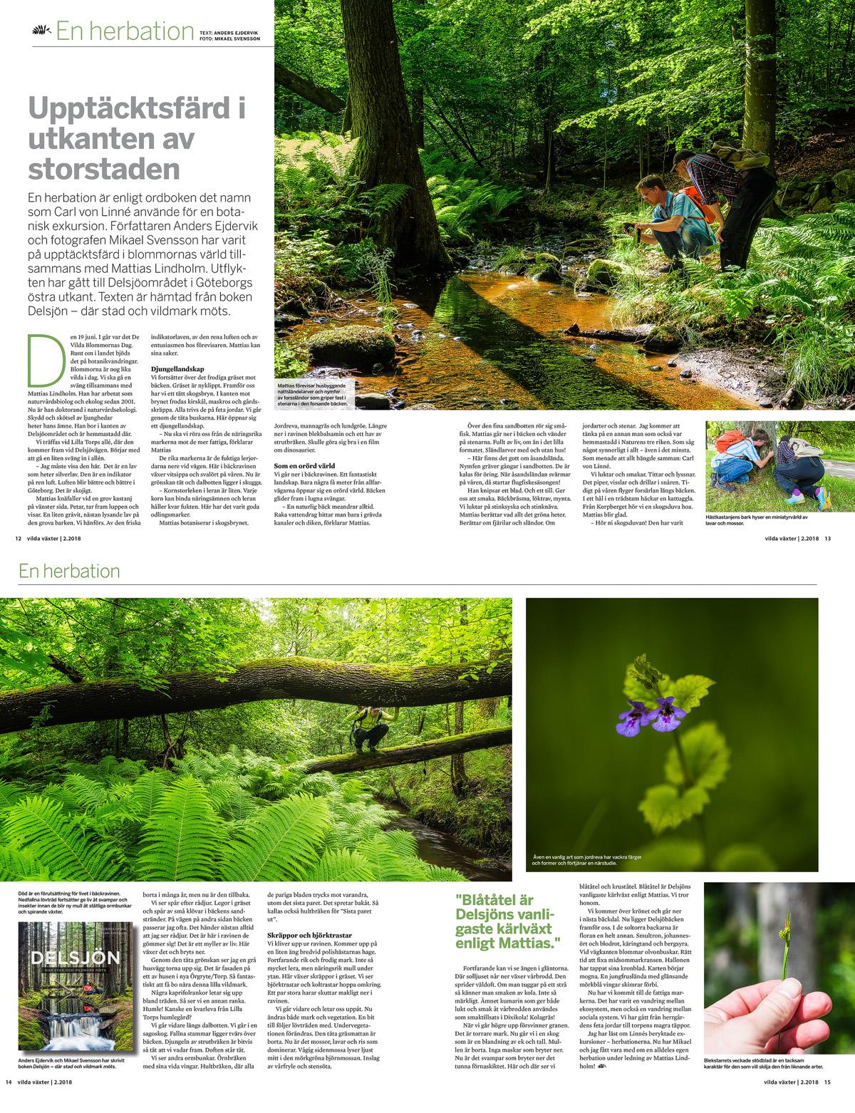 Upptäcktsfärd i utkanten av storstaden. Artikel i tidskriften Vilda Växter nr 2 / 2018.