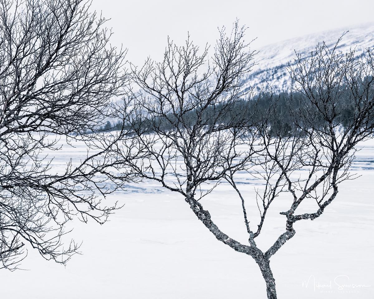 Grövelsjön, Dalarna, Sweden. Foto: Mikael Svensson, www.mikaelsvensson.com