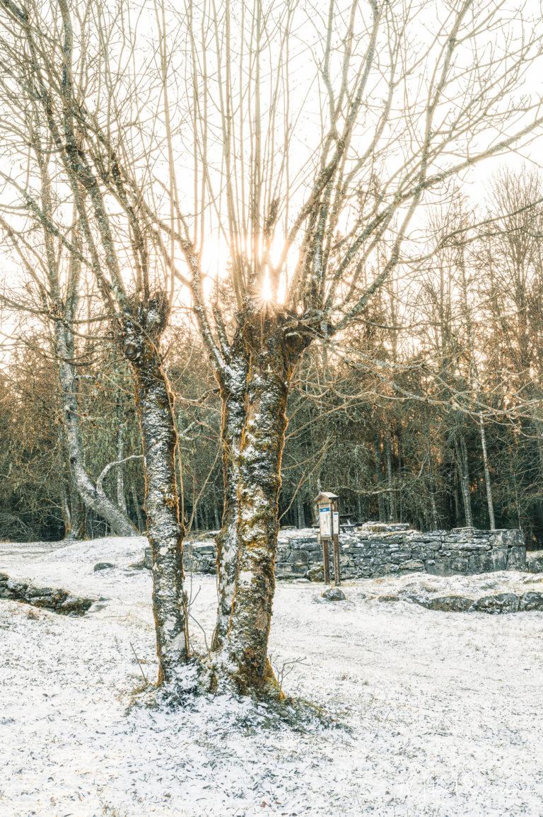 Klippans Naturreservat, Härryda kommun
