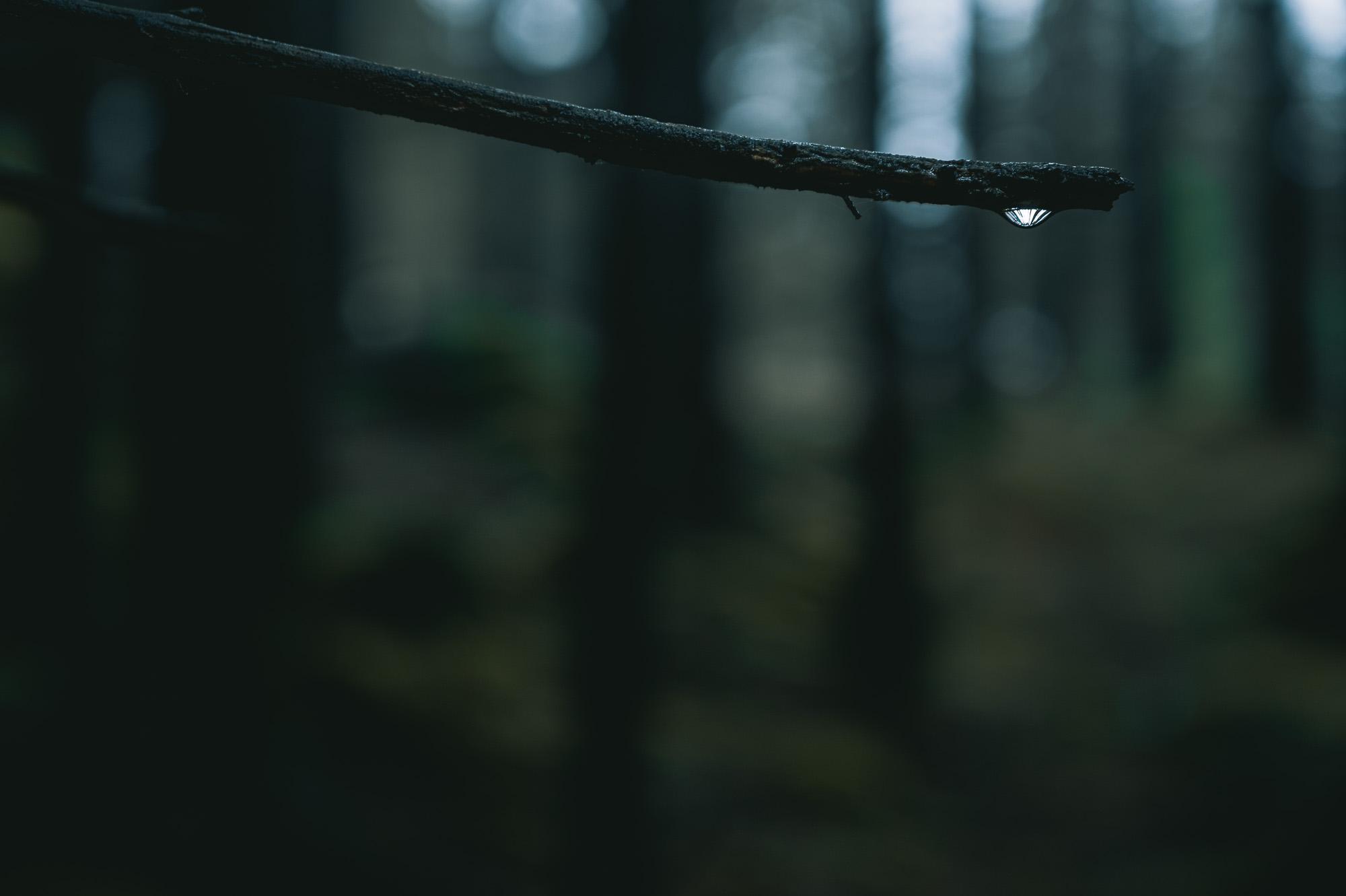 Vattendroppe i Svartedalen
