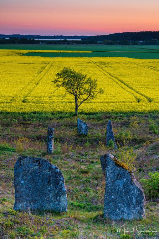 Fjärås Bräcka, Kungsbacka kommun
