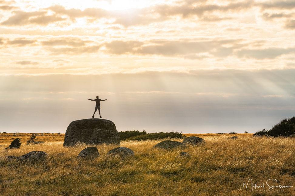 Malön naturreservat, Halland