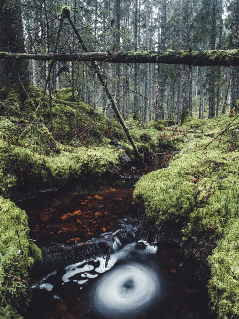 Klippans Naturreservat, Härryda kommun.