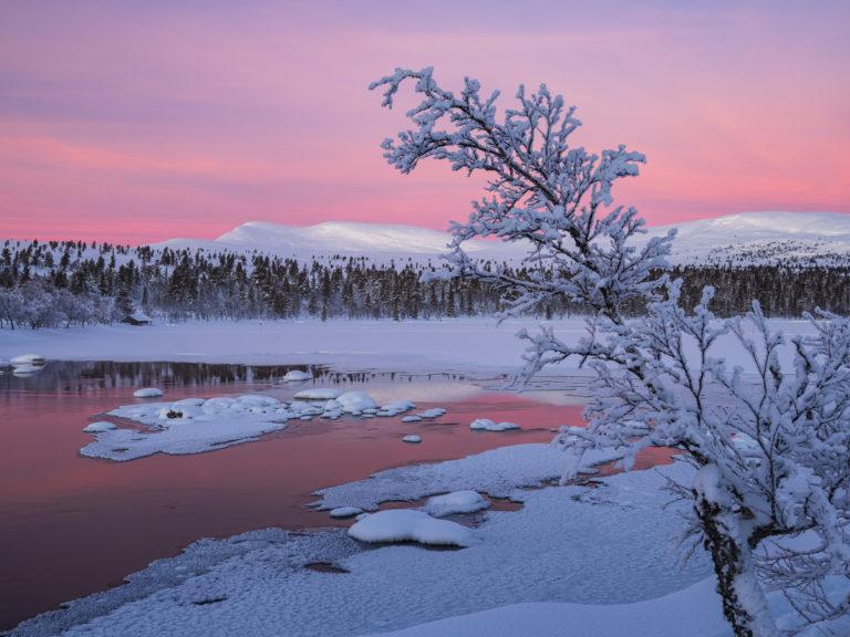 Gryning vid Grövelsjön, Dalarna.