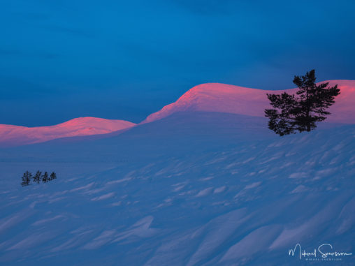 Soluppgång vid Grövelsjöfjällen, Dalarna.